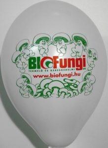 ballons gonflables imprimés